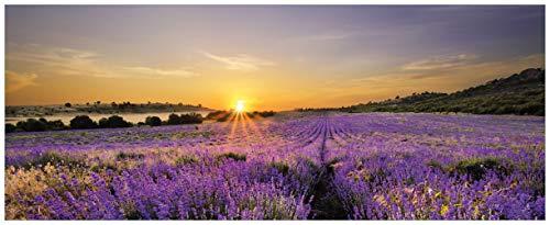 Wallario Acrylglasbild Sonnenuntergang über dem Lavendel - 50 x 125 cm in Premium-Qualität: Brillante Farben, freischwebende Optik