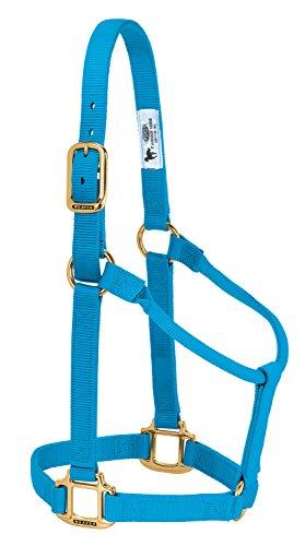 Weaver Leather Halfter für Pferde, Nicht verstellbar, Nylon, Hurricane Blue, Weanling/Pony