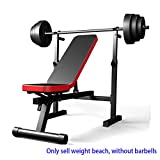 YLM Banco de Pesas Ajustable, Banco de Pesas Ajustable Plegable Gimnasio Fitness Entrenamiento con Ejercicios Multi Sit Up Workout Barbell Dip Station Lifting Chest Press