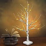 Joiedomi 24' LED Birch Tree with 24 Lights, Warm White Tabletop Centerpiece Bonsai Tree Light...