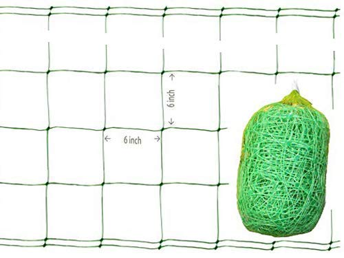 LAVZAN 5/55/65FT Width 15/20/25/30/50/60/80/100/150/200/250/328FT Length Green/White Trellis Netting Netting for Vine Plant Climbing Netting Plant Support Netting65X25FT