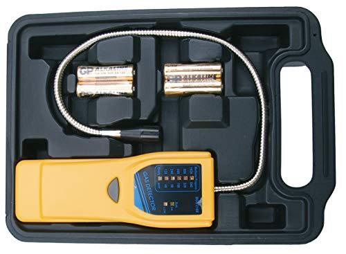 BGS 2198 | Gasdetektor