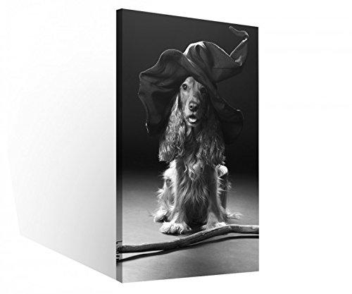 Leinwand 1Tlg Hund Hexe Hut Hexenbesen Halloween Schwarz weiß Leinwandbilder Bild Bilder Holz fertig gerahmt 9S220, 1 Tlg BxH:30x60cm