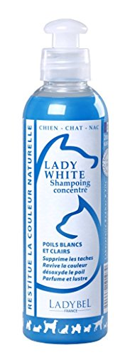 LADYBEL Lady White Shampooing pour Chien 10 L