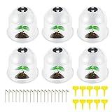 ATopoler 6 Pcs Cloches de Jardin Transparent Réutilisable Cloche de Dôme de Plante pour Réchauffer Plantes Protection Contre Gel avec Etiquettes et Piquets d'ancrage 26 x 21cm (6Pcs)