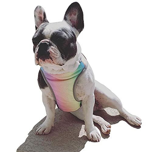 Kühlweste für Haustiere, für den Sommer, kühlende Weste, atmungsaktiv, sonnenfest, für kleine, mittelgroße und große Hunde (Regenbogen, Medium)