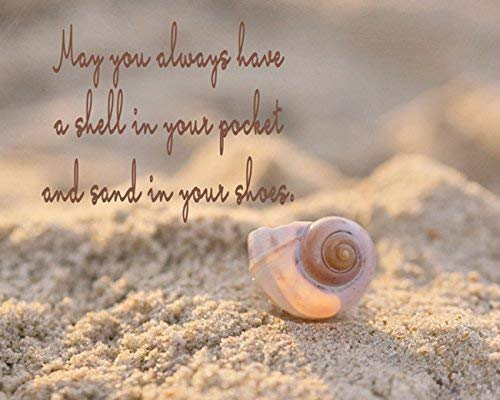 Black and White Photographic Print Inspirational Wall Art Seashell Starfish Picture Life is a Balance Rumi Quote Photo Print Bathroom Bedroom Office Wall Decor Coastal Cottage Beach Decor