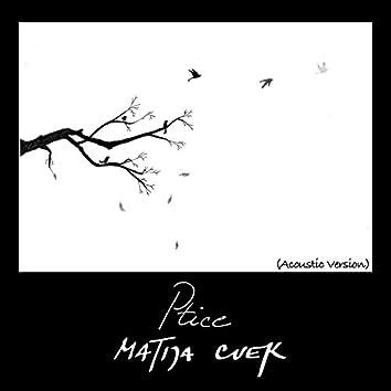 Ptice (Acoustic Version)