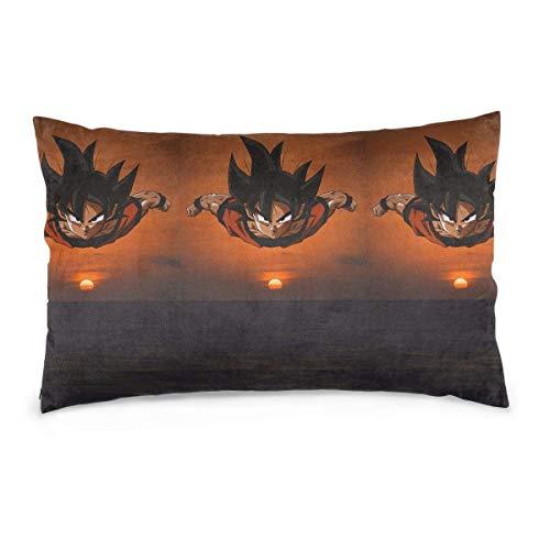 LaoJiNan-shop Kissenbezüge Dragon-Ball Sunset Throw Kissen für Auto Schlafsofa Home Decor 20 'x 30'