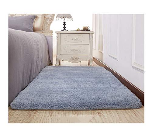 alfombra FWW Sala Simple, Moderna, Gruesa, Felpa, Sala, Mesa de café, Dormitorio, Junto a la Cama Mantas (Color : F, Size : 80 * 200)