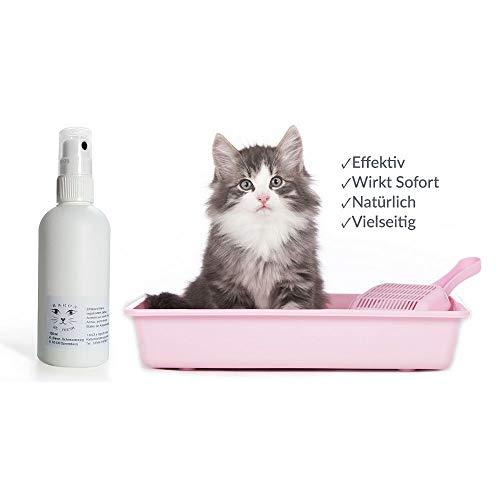 Katzengeruch aus der Wohnung entfernen? Bester Baron's Geruchsvernichter - Ihr Spezialist gegen Tier - Gerüche Aller Art - Rein Biologisch - Katzen-Deo-Duft-Parfum-Mittel-Spray für das Katzenklo