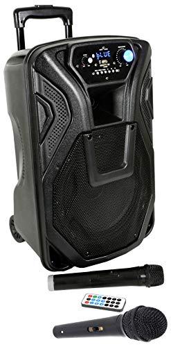 caja acústica Activa amplificada altavoz Karaoke Trolley Portátil Recargable con Bluetooth, Radio, Echo, Eco, USB, SD, MMC, MP3, WMA, Micrófonos inalámbricos, entrada de guitarra, ecualizador