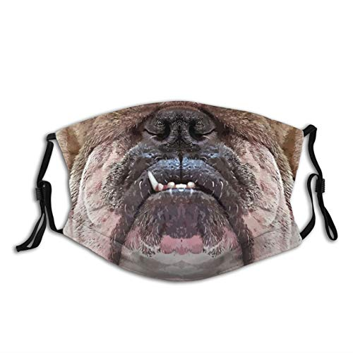 English Bulldog Funny Animal Mouth-Face Mask Balaclava, Washable&Reusable With 2 Filters, For Adult Women Men&Teens