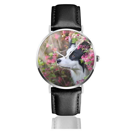 Reloj de cuero con borde de animales Collie lindo perro mascota unisex clásico casual moda reloj de cuarzo reloj de acero inoxidable con correa de cuero