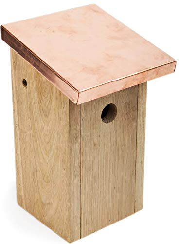 NEST TO NEST Bird Box | Copper Roof Bird House | Bird Nesting Box From Oak Wood | Bird House For Garden | Bird Nest, Premium Quality