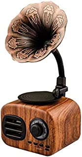 Kuty Portable Wireless Bluetooth Speakers Palm Size, with FM Radio Gramophone Retro Design, Built-in Rechargeable Battery,...