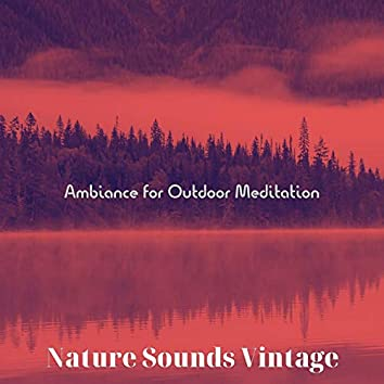 Ambiance for Outdoor Meditation