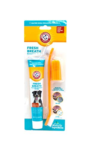 Arm & Hammer Dog Dental Care Fresh Breath Kit for...