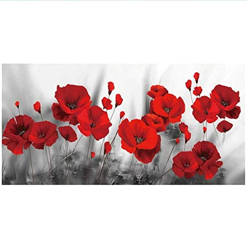 RuiChuangKeJi Impresiones para Paredes 60x120cm sin Marco Pinturas abstractas de Flores de Amapola en el Arte Carteles Impresiones Flores Imágenes de Arte Decoración de la Pared del hogar Cuadros
