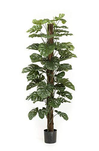 artplants.de Philodendron Monstera Deliciosa de plástico LASO, 180cm - Filodendro Falso - Planta Tropical Artificial