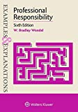 Professional Responsibility (Examples & Explanations)