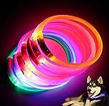 No Name Ltd Collier pour chien avec flash et rechargeable par USB pour la sécurité des animaux domestiques Rose fluo