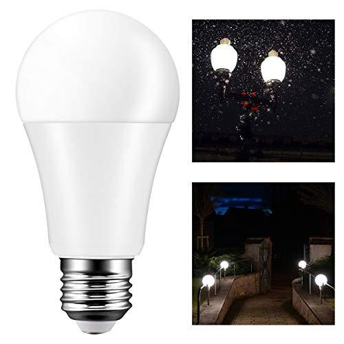 TTAototech E27 kogellamp, auto sensor licht schemering in de ochtendgrijs bij weinig gebruik buitenshuis voor tuinhofwand