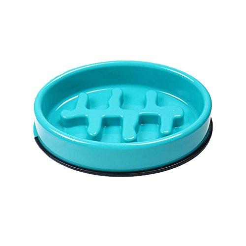 Ellipse Fish Bone Dog Bowl Pet Bowl Food Slow Feed Bowl pour chiens Cats 10.2 x 7 \