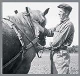 adhome 100073Puzzle Madera Sylvia Tay Seller un caballo de tiro 15piezas