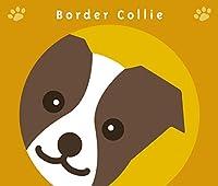 見つめる ボーダー コリー チョコ & ホワイト 犬 ステッカー オレンジバック