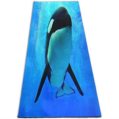 KASABULL Esterilla Yoga Foam World Sea Orlando San Diego y ballena orca azul nadando bajo el agua Colchonetas de ejercicio Pilates para entrenamiento en casa Gimnasio Fitness Meditación Alfombra