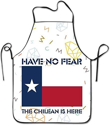 DUTRIX Have No Fear El chileno está aquí Delantal de Cocina con Barbacoa de Chile