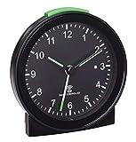 TFA Dostmann de Radio Reloj Despertador