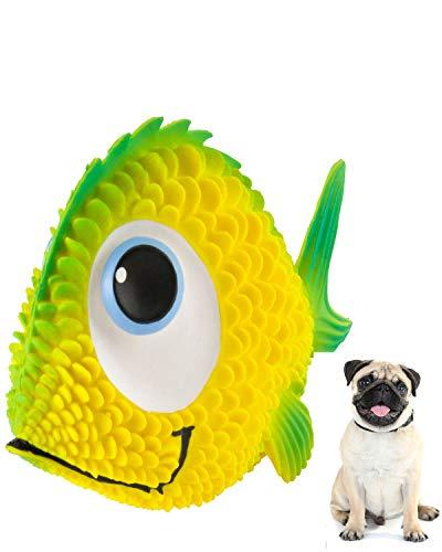 Sensory Fish