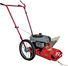 Best wheeled trimmers briggs and stratton Reviews