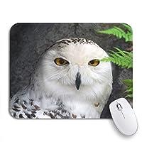NINEHASA 可愛いマウスパッド ノートパソコン、マウスマット用のグレートスノーフクロウ鳥アニマルビークノンスリップラバーバッキングマウスパッドのグリーンスノーイー