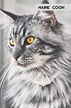 Maine Coon: Perfect for Notes, Memories and Planning (Journal, Diary), 100 Blank Lined Pages (6x9) (German Edition)