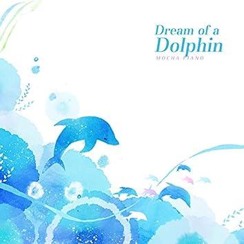돌고래의 꿈