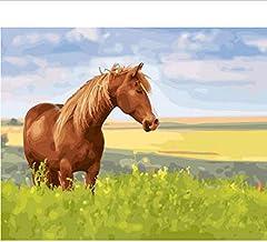 Frameless Schilderen door getallen Kleurplaten door cijfers voor Home Decor Muurdecoratie Canvas Schilderij 40 * 50Cm Paard