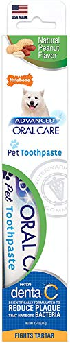 Nylabone Advanced Oral Care Natural Toothpaste Peanut Flavor 2.5 oz.