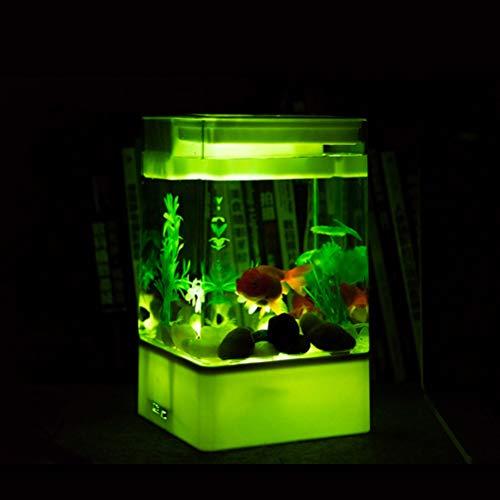 POPETPOP - Piccola Ciotola per Pesci Rossi Creativa, Acquario Trasparente, per la Decorazione di casa e Ufficio (Bianco, Senza batterie)