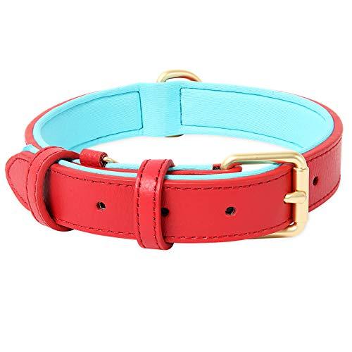 HEELE Hundehalsband, Hundehalsband mit gepolstert und echtes Leder, Verstellbar, Halsband für Welpen Mittlere Kleine Hunde, Rot, M