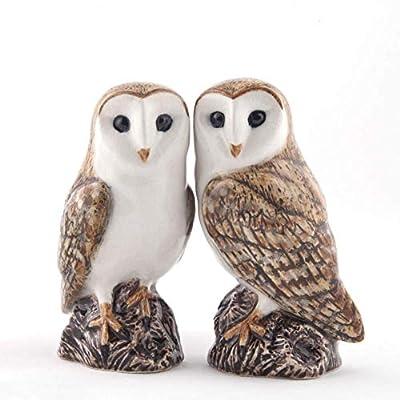 Quail Ceramics - Barn Owl Salt And Pepper Pots by Quail Ceramics