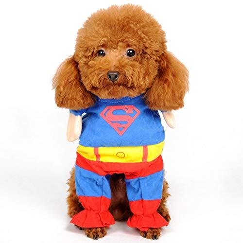 GGDJFN Spider Man Pet Dog Costume, Pet Dog Clothes Puppy Pet Tuta Superman, Cloaks Pets Dress Up Halloween Party Apparel Inverno Caldo Cappotto per Cani Gatto (Size : XS)