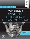 Wheeler. Anatomía, fisiología y oclusión dental (11ª ed.)
