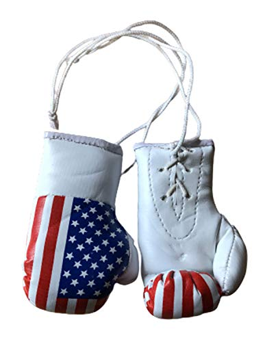 Gifts & Gadgets Co. Mini-Boxhandschuhe mit USA-Flagge
