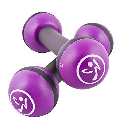 Zumba 2-tlg. Toning Sticks Set Fitness Rasseln Hanteln 1 kg Grau und Lila ZUM011