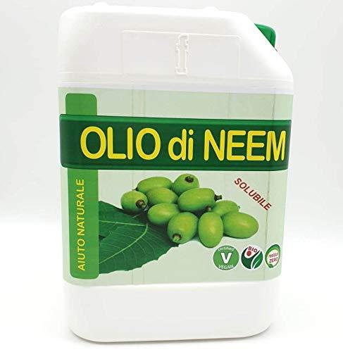 FITOKEM Olio di NEEM per Piante 5 Litri Biologico idrosolubile Contro Insetti e parassiti