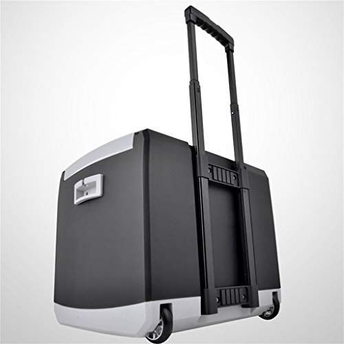 ZCJBB Kühlschrank Mini, 44L 12V DC 110-240V Wechselstromkühlung Heizung Kühlschrank Mini Kleines Zuhause Mini Auto Dual-Use Der Kühlschrank Mini-Kühlschrank Kühler & Wärmer | Kompakt, tragbar und leis