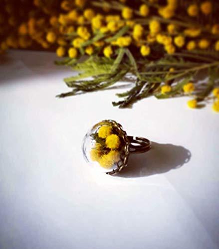 Anello regolabile con cupola di vetro e mimose, Anello bolla botanica, Gioielli con fiori veri, Boccia terrario, Anello con fiori, Regalo festa della donna